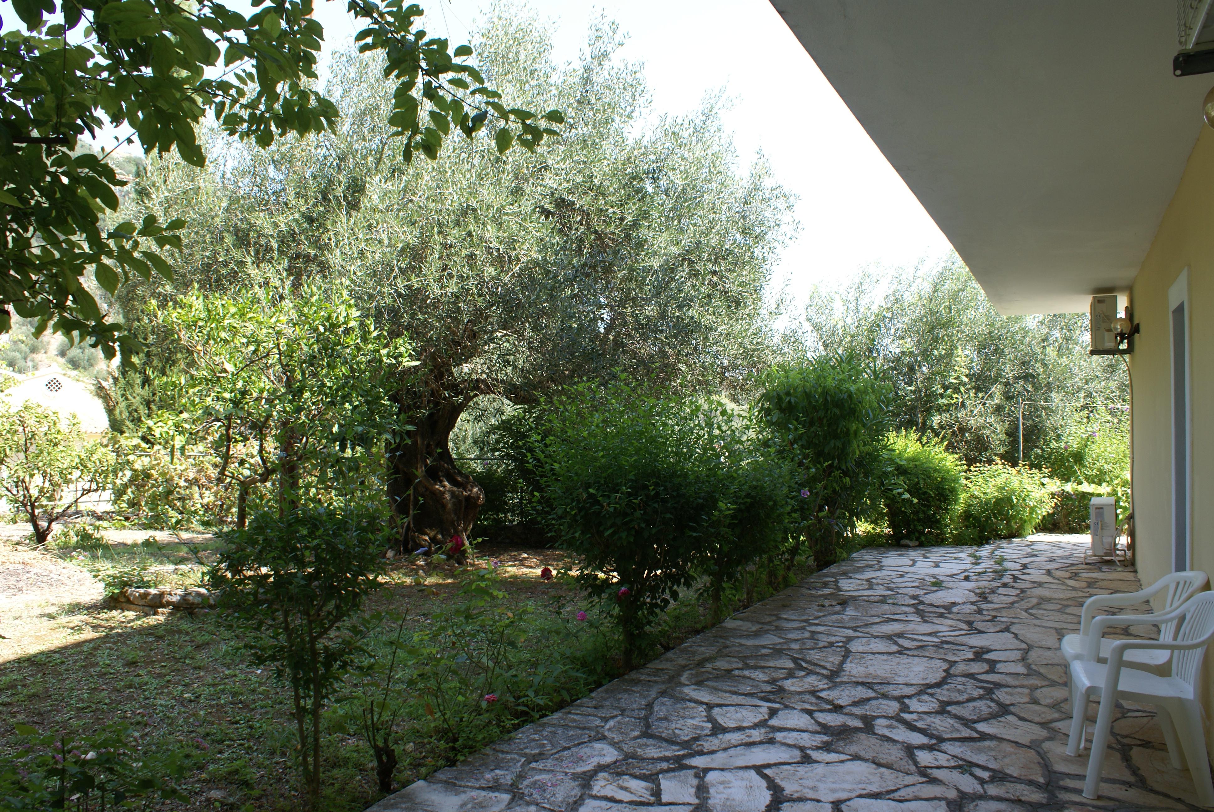 Garten - Balkon - Korfu Ferienhaus Villa Adonis mit Pool, Nissaki, KorfuCorfu.de