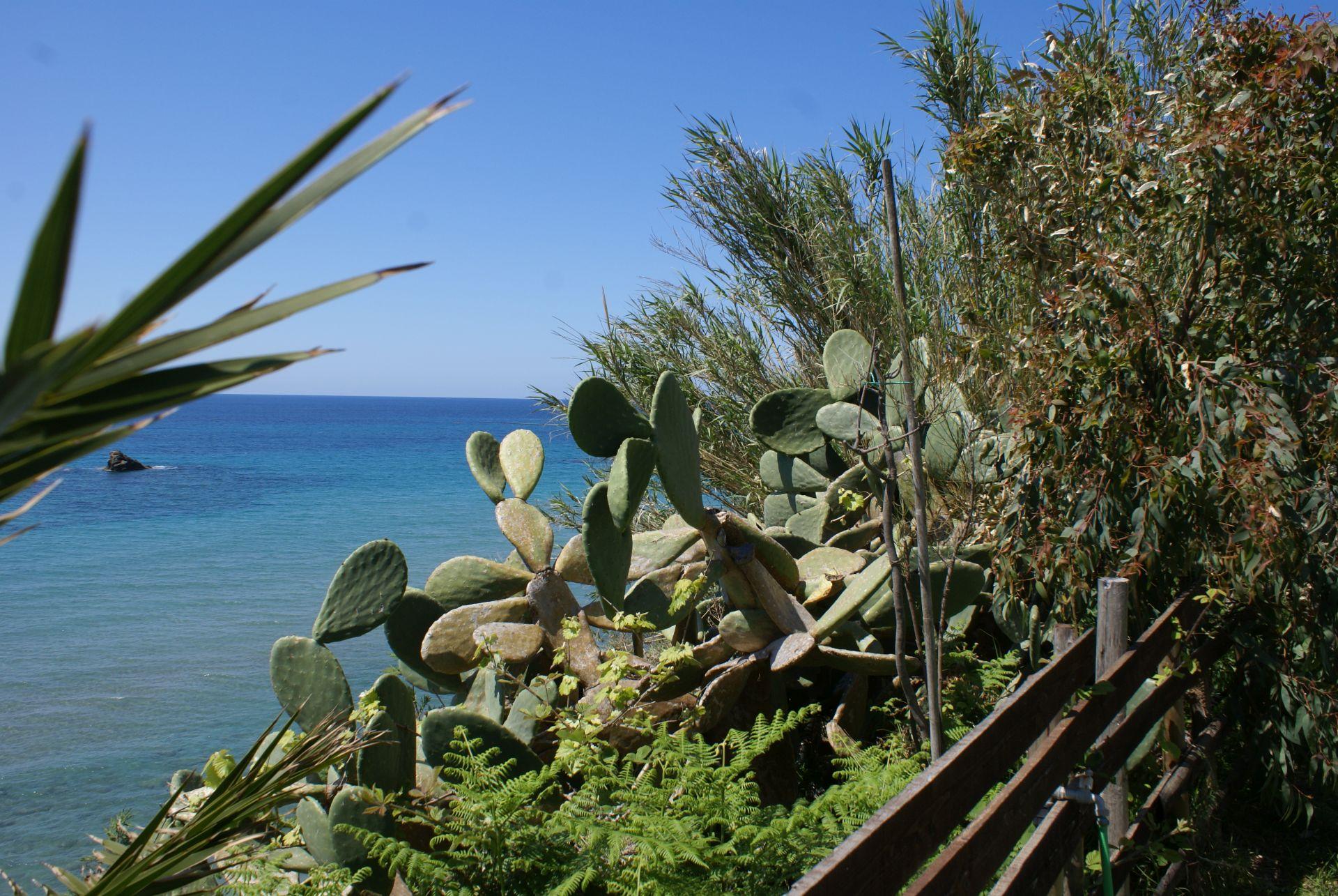 Blick auf das Meer - Korfu Strandvilla Meliti, Kanouli, Agios Matheos, Korfu, KorfuCorfu