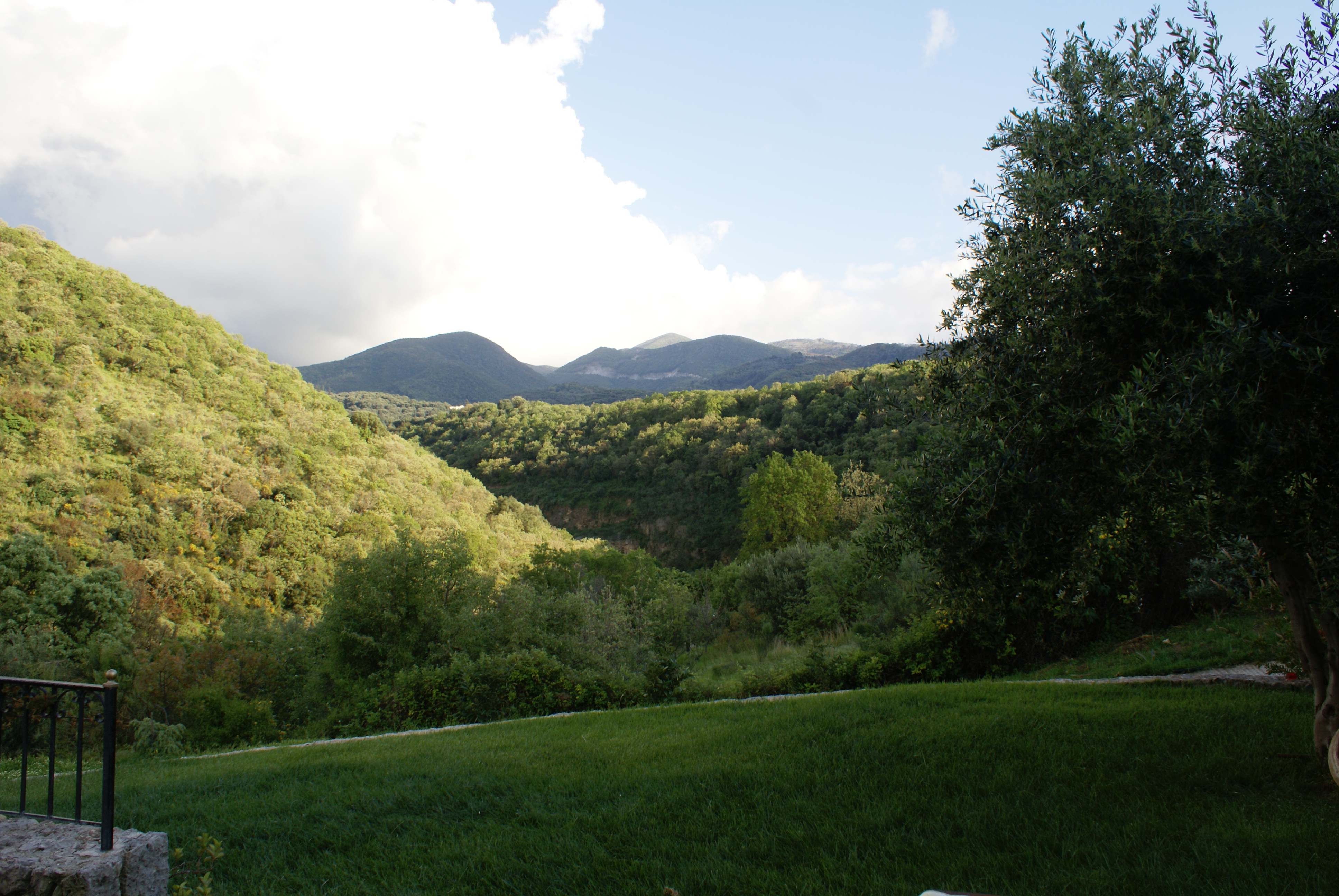 Garten - Korfu Villa Mare e Monti, Almiros, KorfuCorfu.de